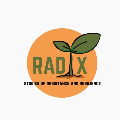 Radix | New Project